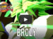 Broly DLC Dragonball Fighter Z