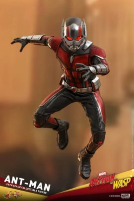 Ant Man et la Guess Hot toys